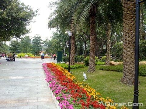 广州珠岛宾馆 fanyi1998点评