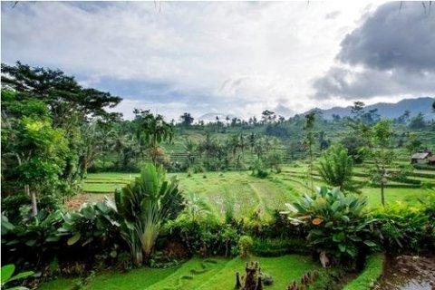 [巴厘岛][苏里亚香缇别墅酒店(surya shanti villa)]